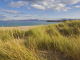 Sand Dunes and Dune Grasses of Mellon Udrigle Beach, Wester Ross, North West Scotland Photographie par Neale Clarke