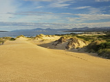 Sand Dunes, St. Helens Conservation Area, St. Helens, Tasmania, Australia, Pacific Photographic Print by Jochen Schlenker