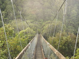 Swingbridge, Motu Falls, Motu, Gisborne, North Island, New Zealand, Pacific Photographic Print by Jochen Schlenker