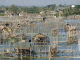 Fish Pens in Channel Through Wetlands at South End of Lingayen Gulf, Philippines Photographie par Tony Waltham