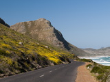 Empty Road to Cape of Good Hope, Cape Town, South Africa, Africa Photographic Print by Sergio Pitamitz