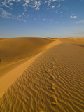 Footsteps in Sand Dunes at Sunset, Near Chinguetti, Mauritania, Africa Photographic Print by Michael Runkel