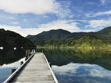 Penzance Bay, Tennyson Inlet, Marlborough Sounds, Marlborough, South Island, New Zealand, Pacific Fotografisk tryk af Jochen Schlenker
