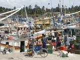 Fishing Harbour, Built With US Aid After the 2004 Tsunami, Purunawella, South Coast of Sri Lanka Photographic Print by Tony Waltham