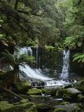 Horseshoe Falls, Mount Field National Park, UNESCO World Heritage Site, Tasmania, Australia Fotografisk tryk af Jochen Schlenker