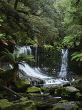 Horseshoe Falls, Mount Field National Park, UNESCO World Heritage Site, Tasmania, Australia Photographic Print by Jochen Schlenker