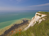 Beachy Head Lighthouse, White Chalk Cliffs, Poppies and English Channel, East Sussex, England, Uk Photographic Print by Neale Clarke