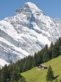 Jungfrau Massif and Swiss Chalet Near Murren, Jungfrau Region, Switzerland, Europe Photographic Print by Michael DeFreitas