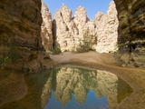 Little Pool in the Essendilene Gorge, Near Djanet, Southern Algeria, North Africa, Africa Photographic Print by Michael Runkel