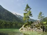 Hintersee, Berchtesgadener Land, Bavaria, Germany, Europe Fotografisk tryk af Jochen Schlenker