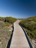 Kommetjie Beach, Cape Town, South Africa, Africa Photographic Print by Sergio Pitamitz