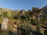 Kirstenbosch National Botanical Garden, Cape Town, South Africa, Africa Photographic Print by Sergio Pitamitz