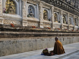 Monk, Mahabodhi Temple, Bodh Gaya (Bodhgaya), Gaya District, Bihar, India, Asia Photographic Print by Jochen Schlenker