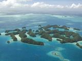 Seventy Islands (Ngerukewid Islands Wildlife Preserve), Forest-Covered Limestone Rock, Palau Photographic Print by Tony Waltham