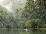 Loboc River, Bohol, Philippines, Southeast Asia, Asia Fotografie-Druck von Tony Waltham