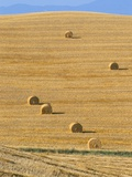 Hay Bales, Val D'Orcia, Siena Province, Tuscany, Italy, Europe Photographic Print by Sergio Pitamitz
