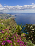 Looking Towards Funchal From Cabo Girao, One of the World's Highest Sea Cliffs, Portugal Photographic Print by Neale Clarke