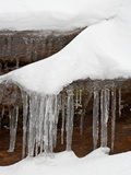 Icicles Hanging From a Rock With Fresh Snow, Zion National Park, Utah, USA Photographic Print by James Hager