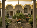 A Patio in the Alcazar, Seville, Andalusia, Spain, Europe Photographic Print by Guy Thouvenin