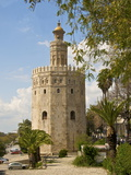 Torre Del Oro, Seville, Andalucia, Spain, Europe Photographic Print by Guy Thouvenin