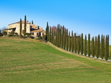 Val D'Orcia, Siena Province, Siena, Tuscany, Italy, Europe Photographic Print by Nico Tondini