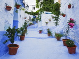 Blue Painted Steps With Flower Pots, Chefchaouen, Morocco, North Africa,Africa Photographic Print by Guy Edwardes