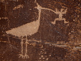 Bird Petroglyph, Petrified Forest National Park, Arizona, United States of America, North America Photographic Print by James Hager