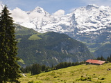 Jungfrau Massif From Murren, Jungfrau Region, Switzerland, Europe Photographic Print by Michael DeFreitas