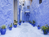 Blue Painted Alley Lined With Flower Pots Leading to Doorway, Chefchaouen, Morocco, North Africa Fotografisk tryk af Guy Edwardes