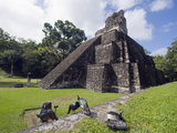 Turkeys at a Pyramid in the Mayan Ruins of Tikal, UNESCO World Heritage Site, Guatemala Photographic Print by Christian Kober