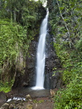 Dark View Falls, St. Vincent, St. Vincent and the Grenadines, Windward Islands Photographic Print by Michael DeFreitas