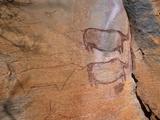 Rock Art, Rhinos, Tsodilo Hills, Ngamiland, Botswana, Africa. Photographic Print by Patrick Dieudonne