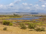 Tsavo River, Tsavo East National Park, Kenya, East Africa, Africa Photographic Print by Sergio Pitamitz