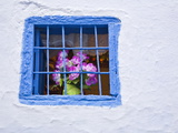 Blue Painted Window and Pink Flowers, Chefchaouen, Morocco, North Africa, Africa Photographic Print by Guy Edwardes