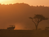 Masai Mara, Kenya, East Africa, Africa Fotografie-Druck von Sergio Pitamitz