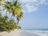 Palm Trees on Beach, Jacmel, Haiti, West Indies, Caribbean, Central America Photographic Print by Christian Kober
