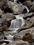Cascades Downstream of Fish Creek Falls, Routt National Forest, Colorado, USA Photographic Print by James Hager
