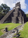Turkeys at a Pyramid in the Mayan Ruins of Tikal, UNESCO World Heritage Site, Guatemala Photographie par Christian Kober