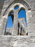 The Unfinished Church in St. George'S, Bermuda, Central America Photographic Print by Michael DeFreitas