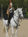 The Trumpeter of the Horse Guards, Horse Guards Parade, London, England, United Kingdom, Europe Photographic Print by James Emmerson