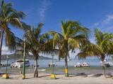 Juangriego Harbour, Juangriego, Isla De Margarita (Margarita Island), Nueva Esparta, Venezuela Photographic Print by Jane Sweeney