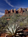 Red Rock Formations and An Agave Plant, Coconino National Forest, Arizona Photographic Print by James Hager