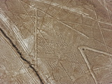Spider, Lines and Geoglyphs of Nasca, UNESCO World Heritage Site, Peru, South America Photographic Print by Christian Kober