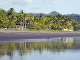 Vultures on the Beach at Playa Sihuapilapa, Pacific Coast, El Salvador, Central America Photographic Print by Christian Kober