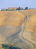 Crete Senesi, Siena Province, Tuscany, Italy, Europe Photographic Print by Sergio Pitamitz