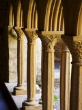 Finely Carved Capitals in the Cloisters, Iona Abbey, Isle of Iona, Scotland, United Kingdom, Europe Reproduction photographique par Patrick Dieudonne
