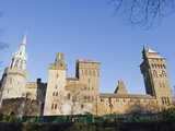 Cardiff Castle, Cardiff, Wales, United Kingdom, Europe Photographic Print by Christian Kober
