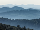 View Across Landscape of Riserva Naturale Alto Merse, Siena Region, Tuscany, Italy, Europe Photographic Print by Guy Edwardes