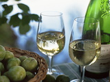 Glasses of White Wine on Table With River Relected in Glass, Loire, France, Europe Photographic Print by John Miller