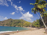 Fisherman on a Palm-Fringed Beach, Englishmans Bay, Tobago, Trinidad and Tobago Photographic Print by Christian Kober